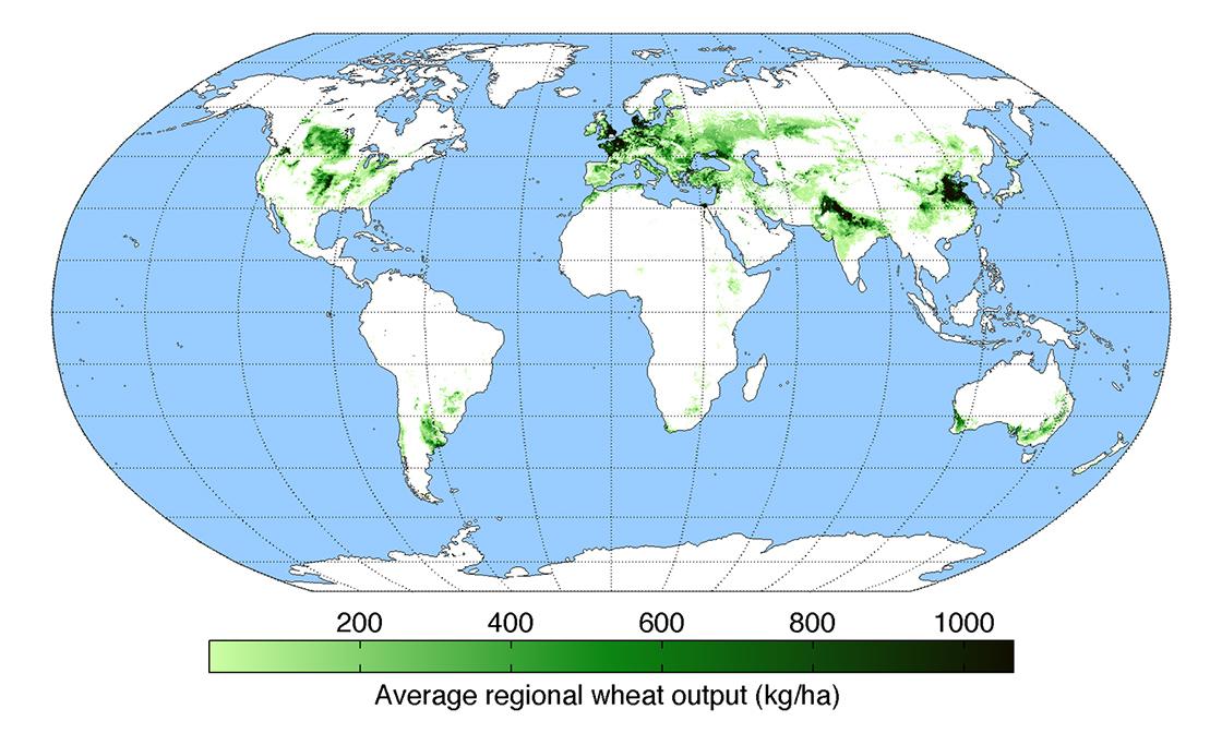 mapa produccion trigo